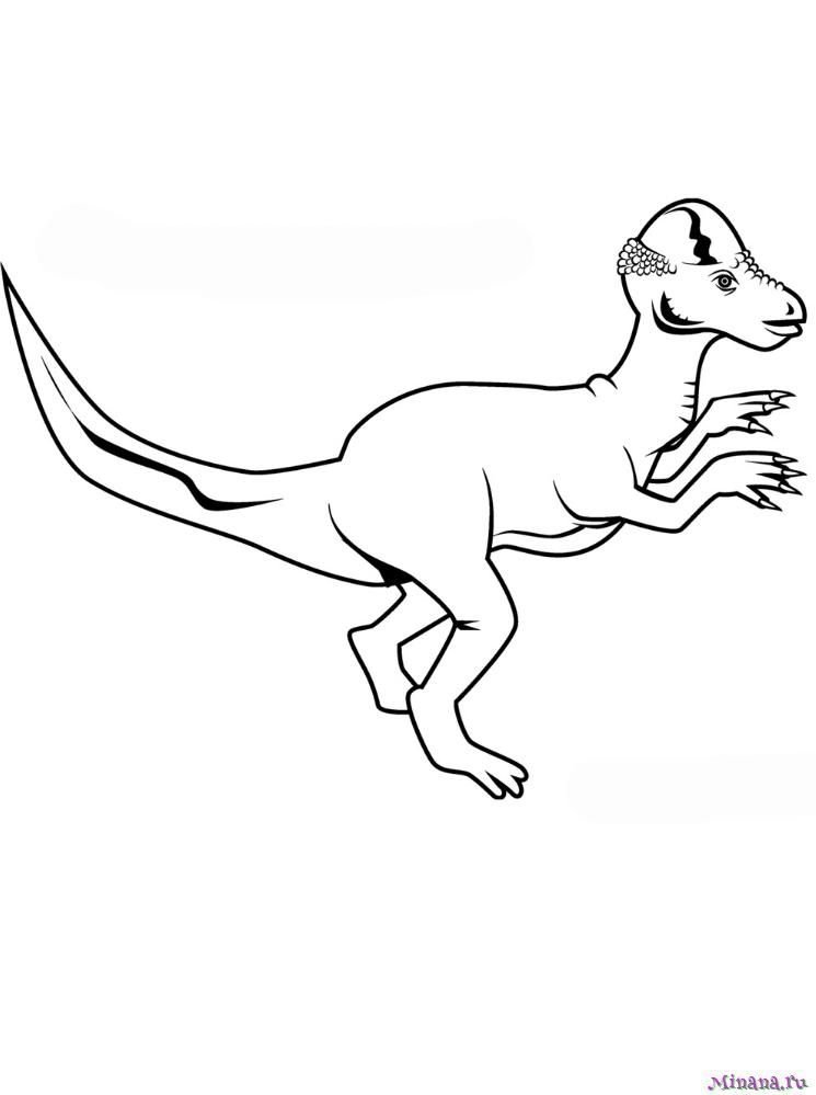 Пахицефалозавр