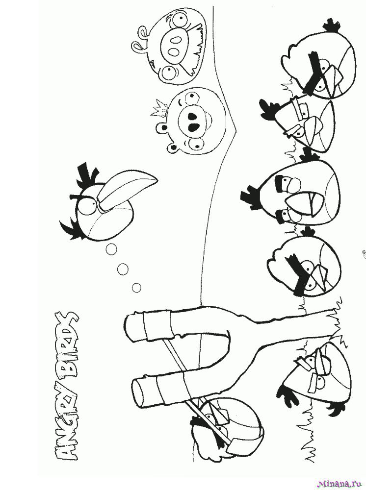 раскраска энгри бердз 7