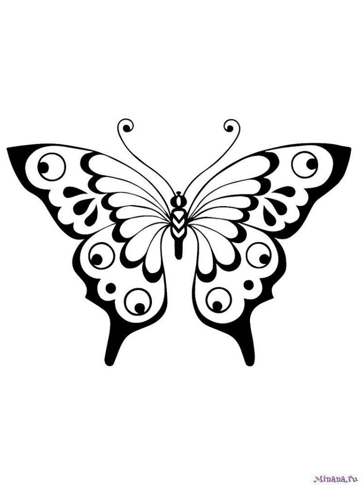 Раскраска Бабочка 10