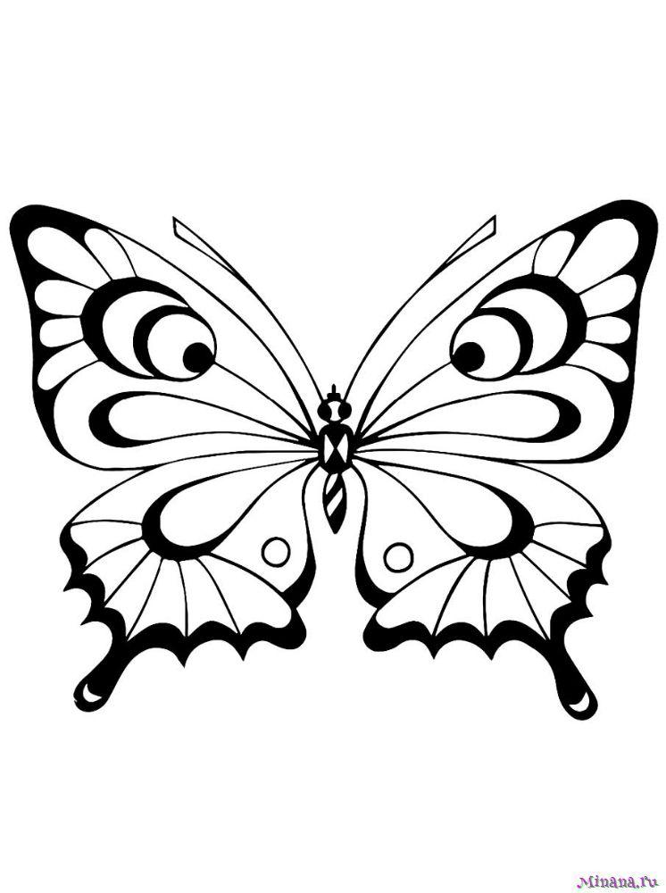 Раскраска Бабочка 7