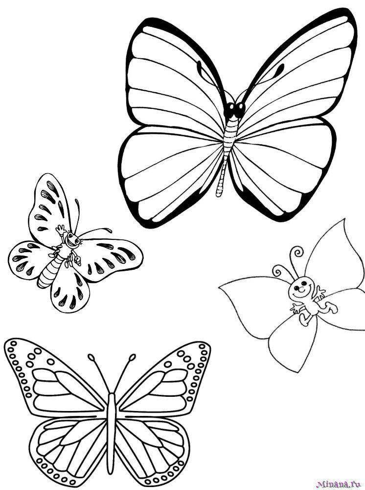Раскраска Бабочки 3