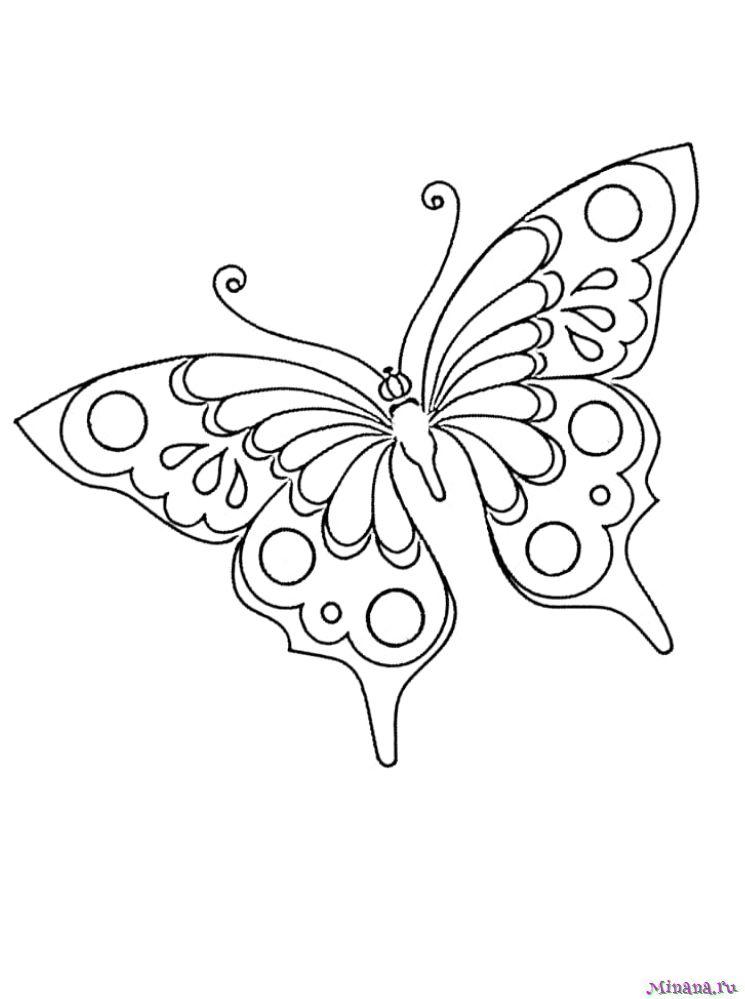 Раскраска Красивая Бабочка