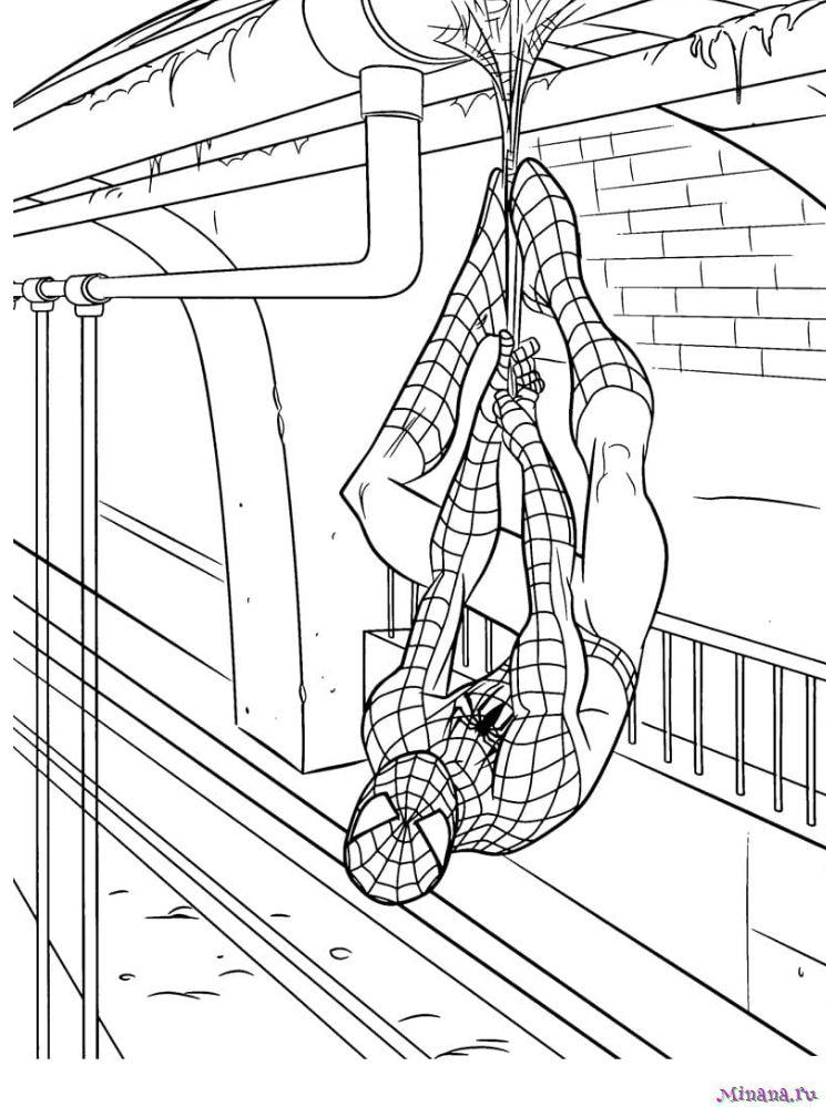 Раскраска человек паук 10   Minana.ru