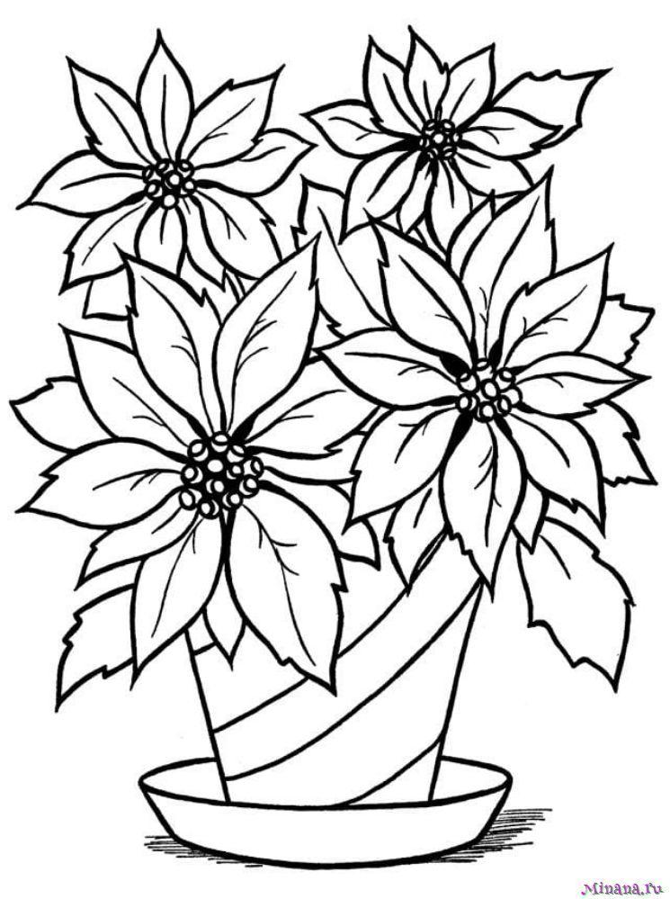 Раскраска Горшок цветами