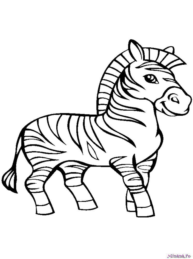 Раскраска зебра 3