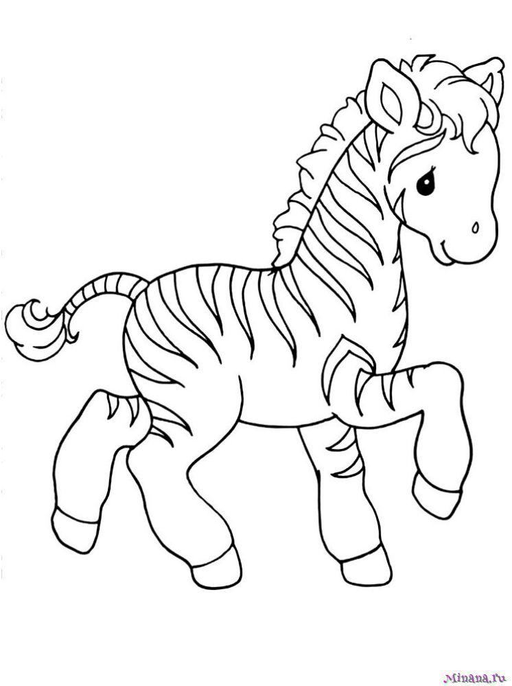 Раскраска зебра 4