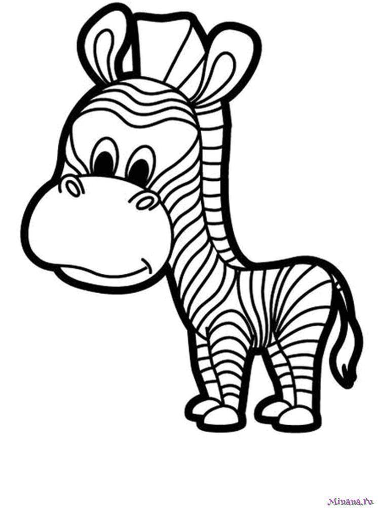 Раскраска зебра 7