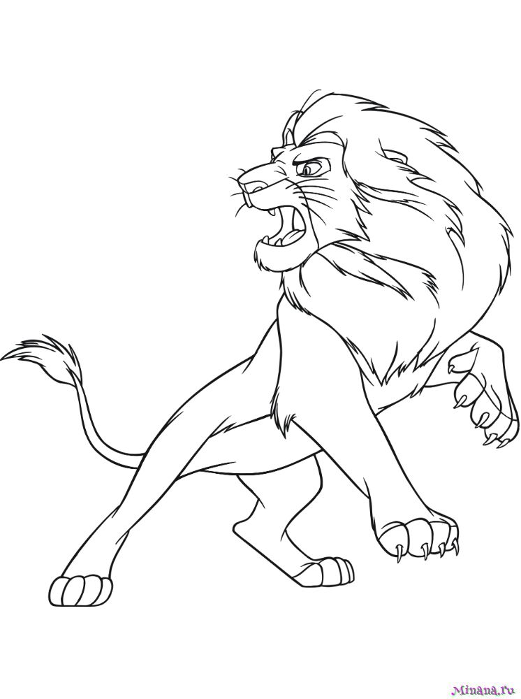 Раскраска лев 3