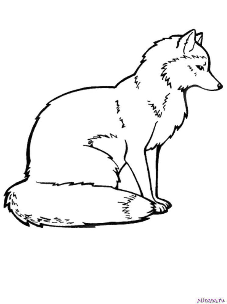 картинка лисы печать рубашки