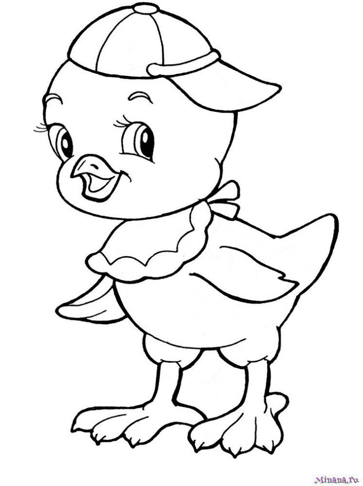 Раскраска цыпленок 4