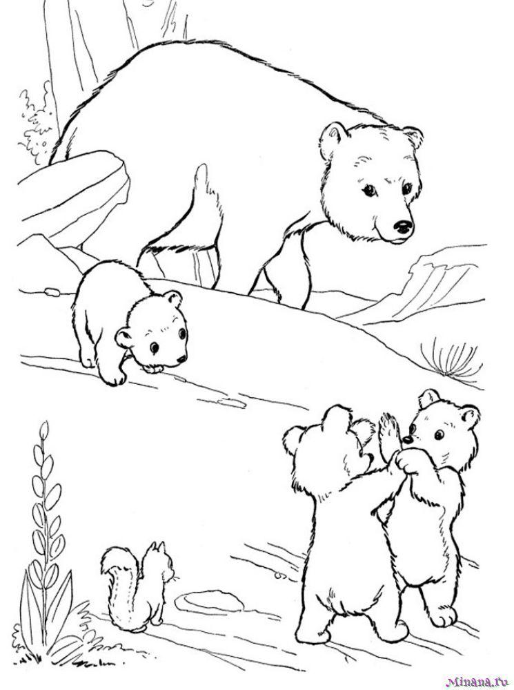 Раскраска мишки