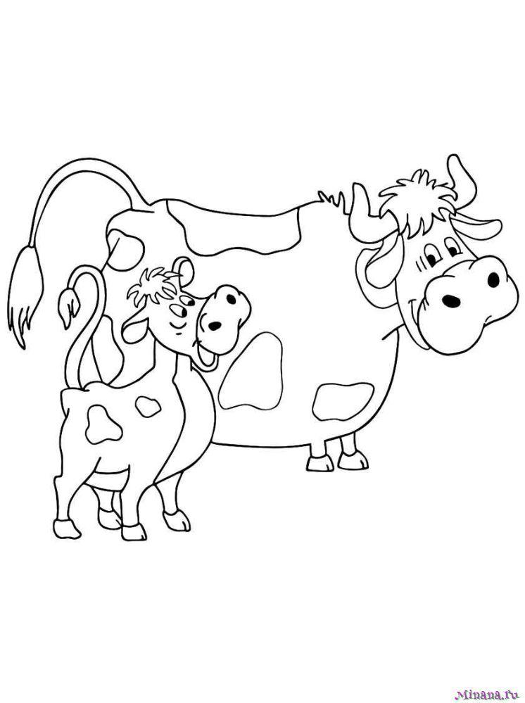 Раскраска корова 3