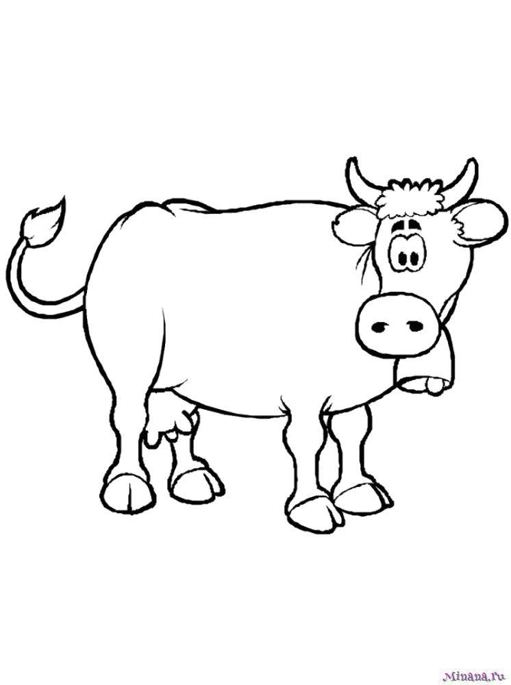 Раскраска корова 5 | Minana.ru