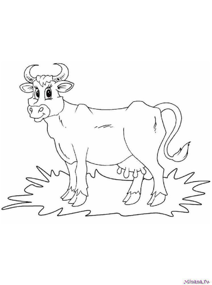 Раскраска корова 6 | Minana.ru