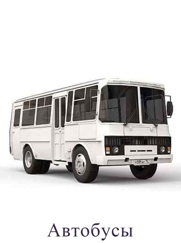Автобусыы