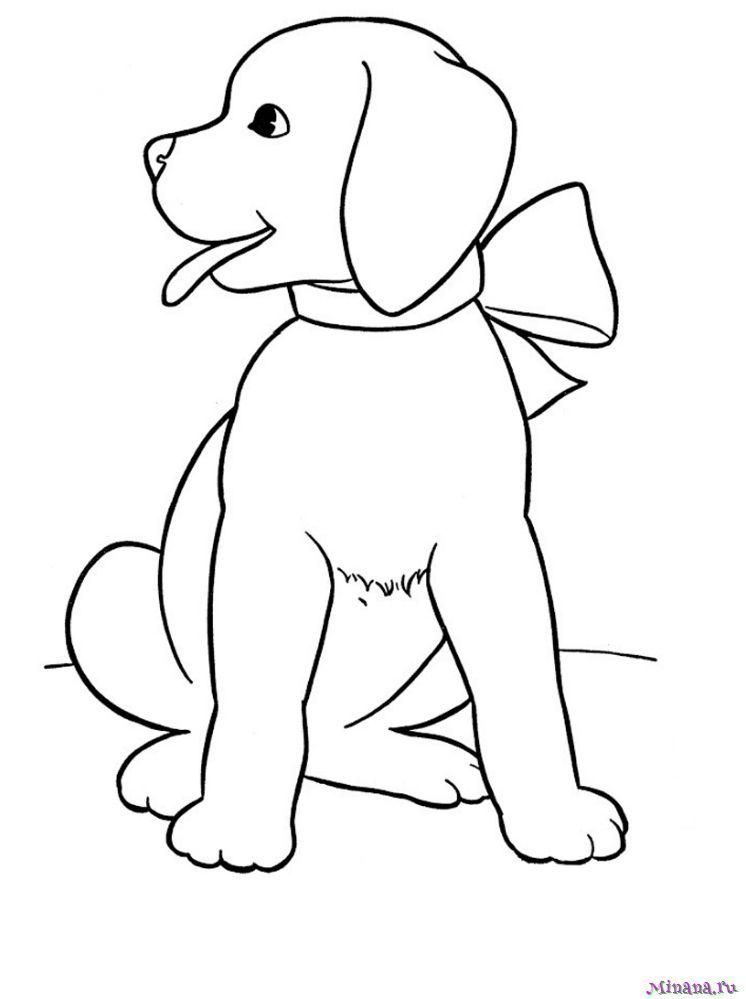 Раскраска красивый щенок
