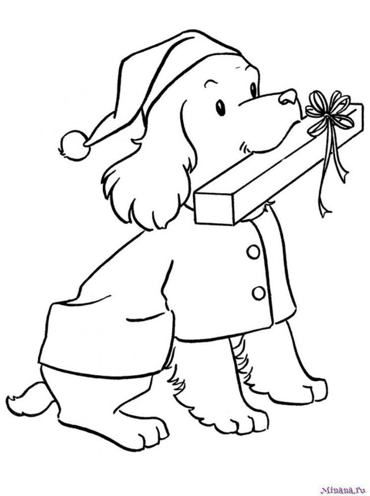 Раскраска пес с подарком