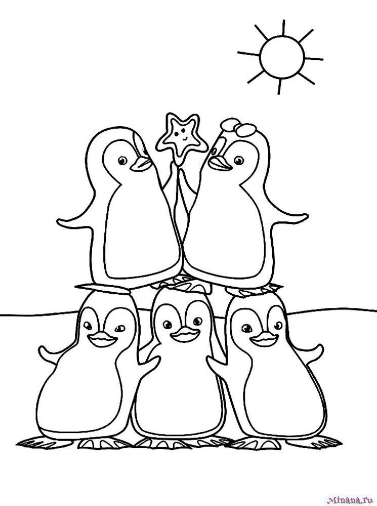 Раскраска пингвины 3