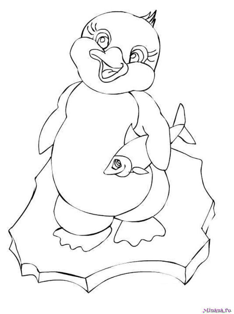 Раскрашивай пингвины или печатай раскраски на принтере | 999x746