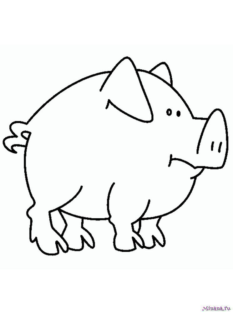 Раскраска свинья 4