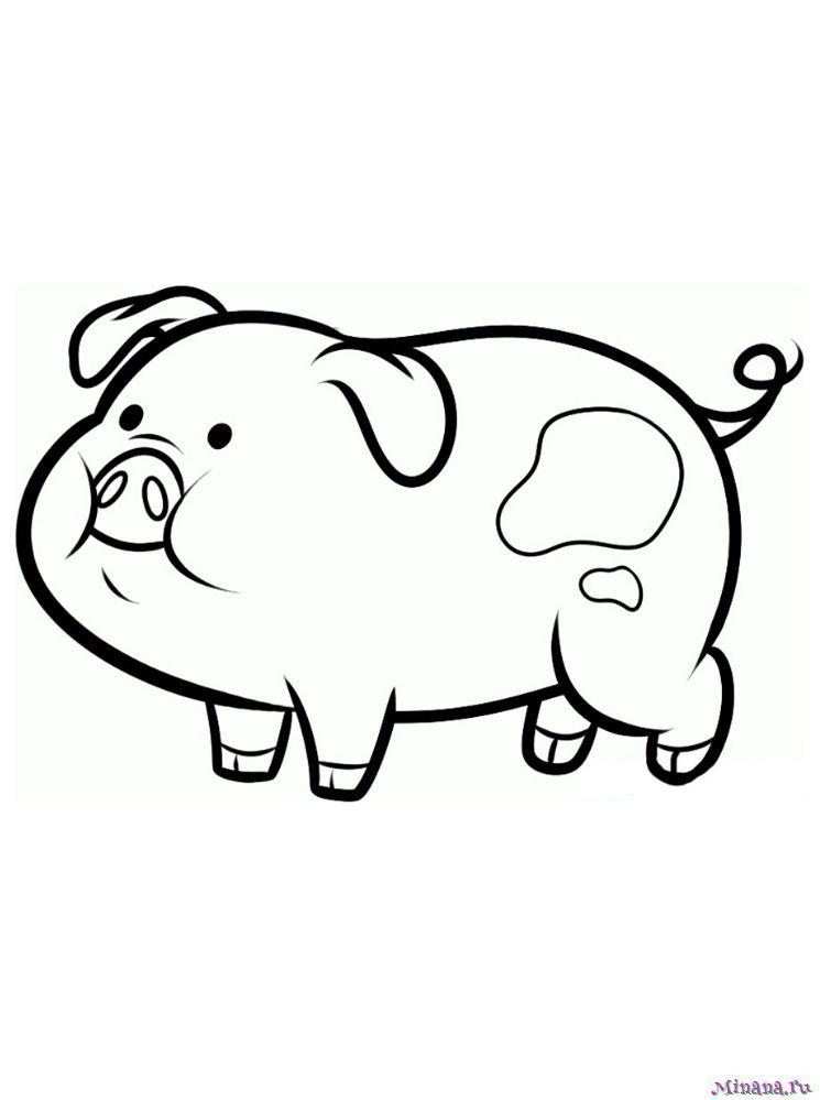 Раскраска свинья 6