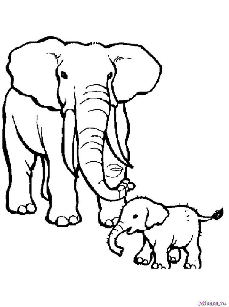 Раскраска слониха со слоненком