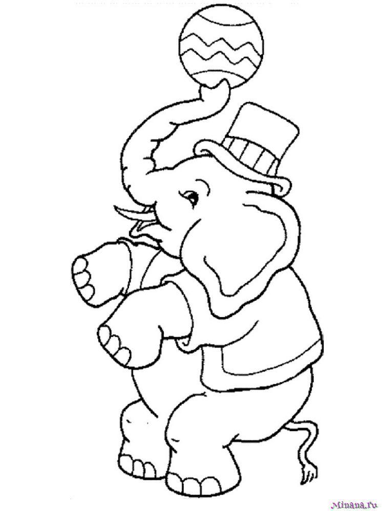 Раскраска слон с мячом