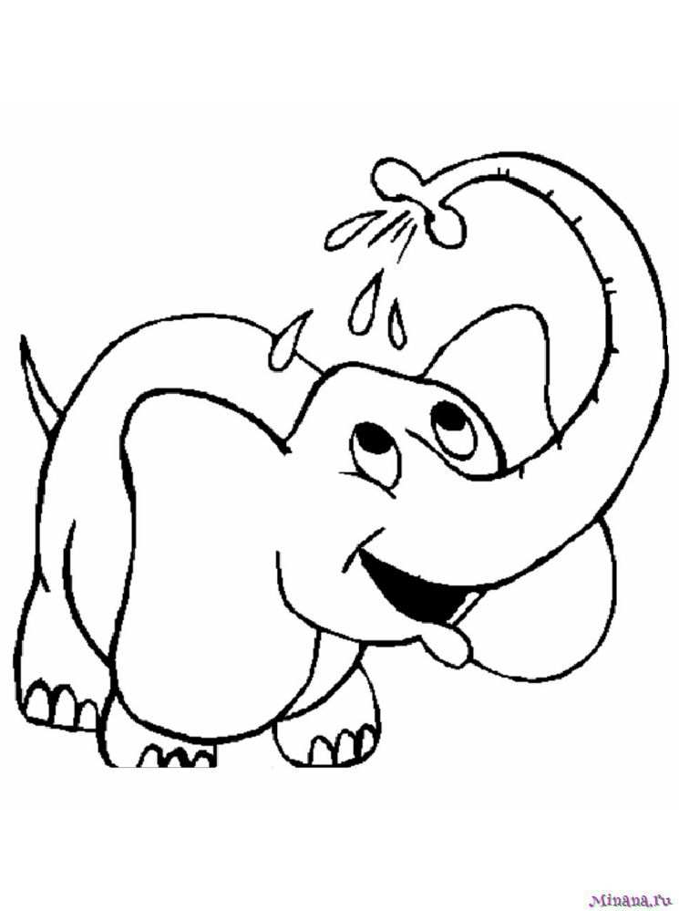 Раскраска слон 4