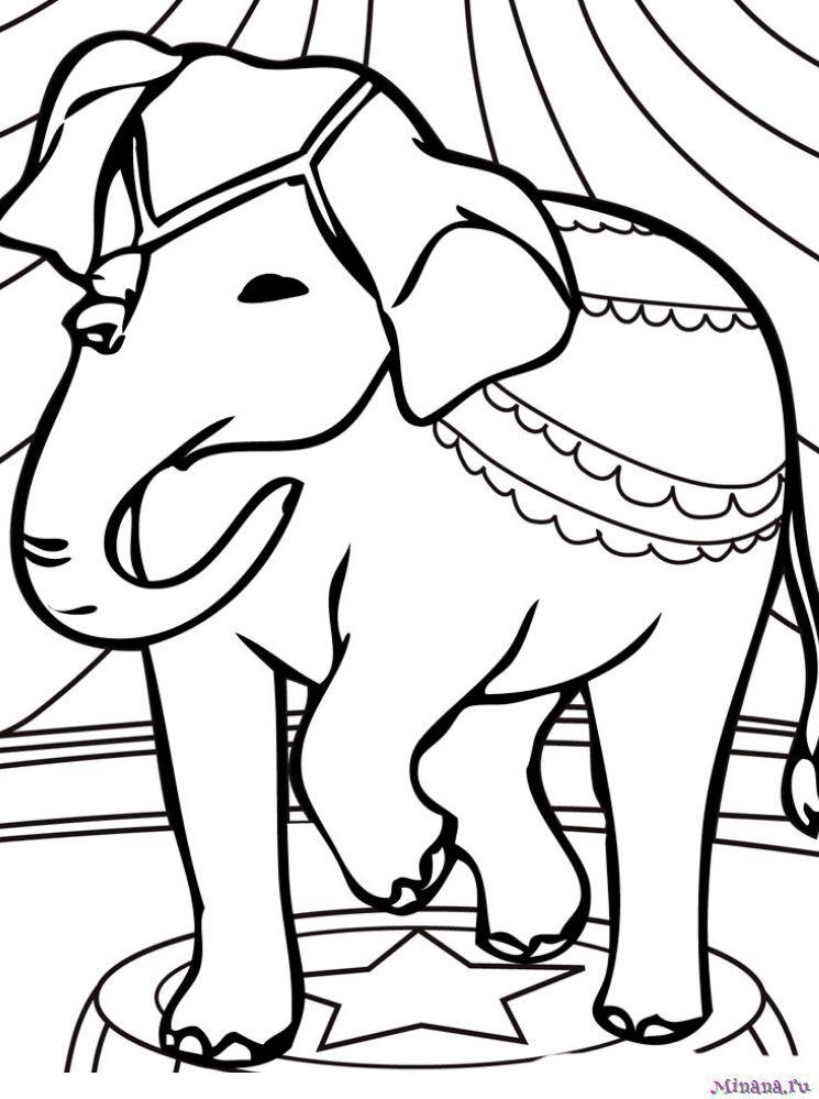 Раскраска слон 6