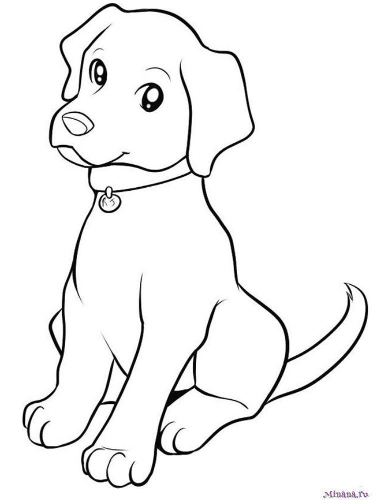 Раскраска собака 3 | Minana.ru