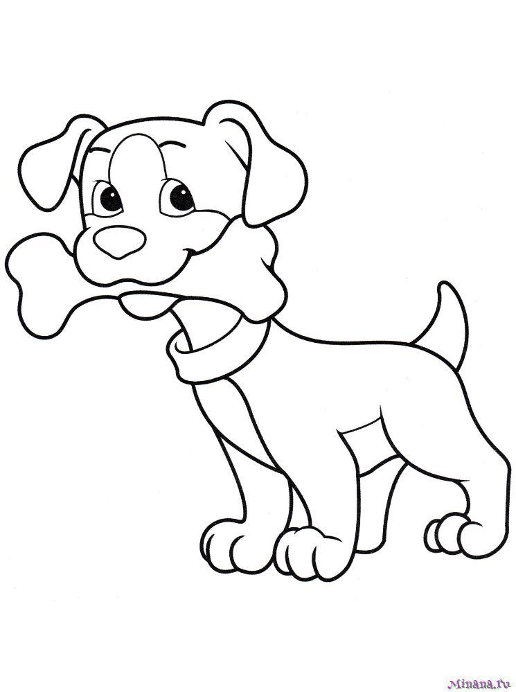 Раскраска щенок с костью
