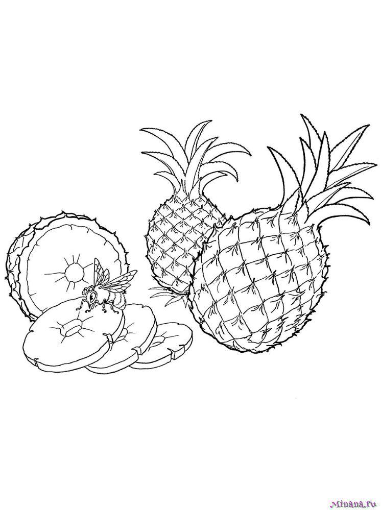 Раскраска ананасы