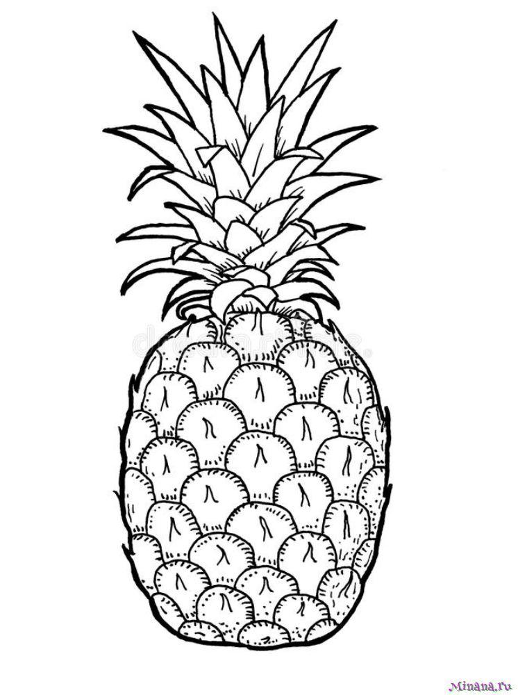Раскраска ананас 6