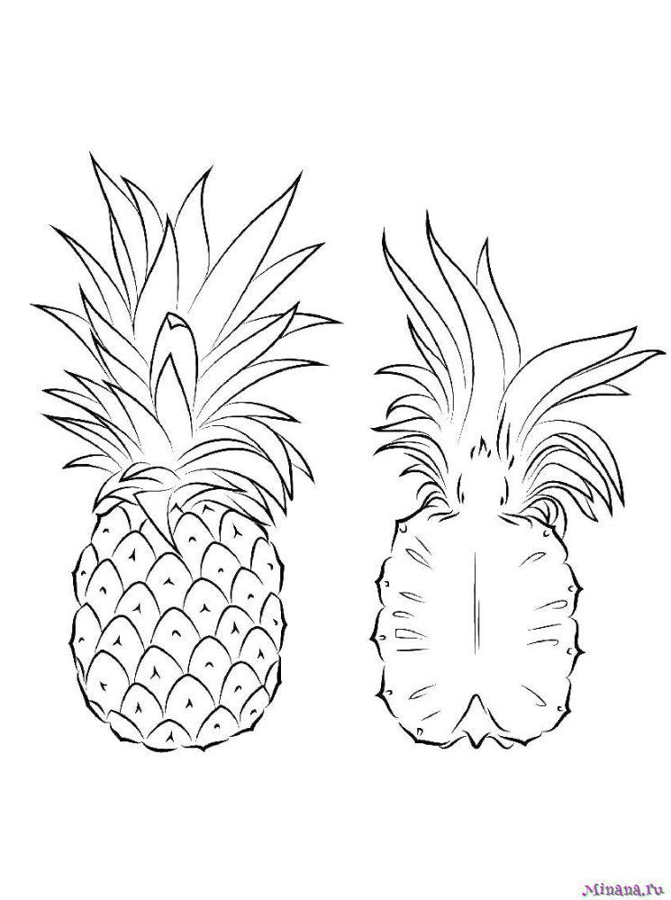 Раскраска ананас 7