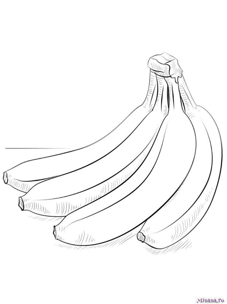 Раскраска ветка бананов