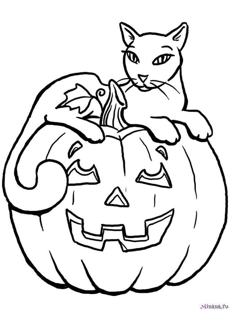 Раскраска тыква и кот