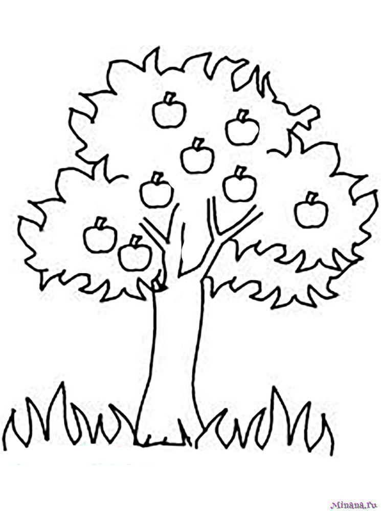 Раскраска яблоня