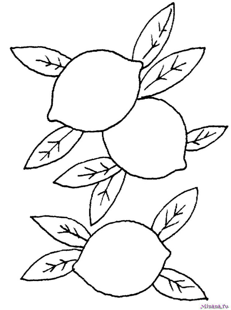 Раскраски лимоны