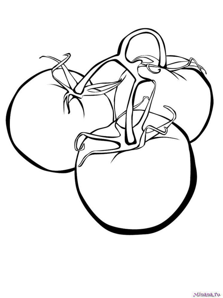 Раскраска помидоры 3