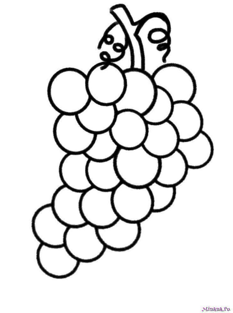 Раскраска виноград 3