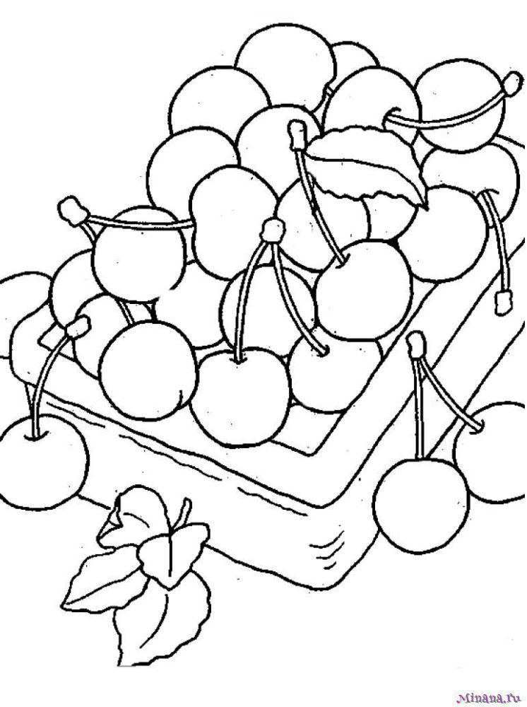 Раскраска вишня 11