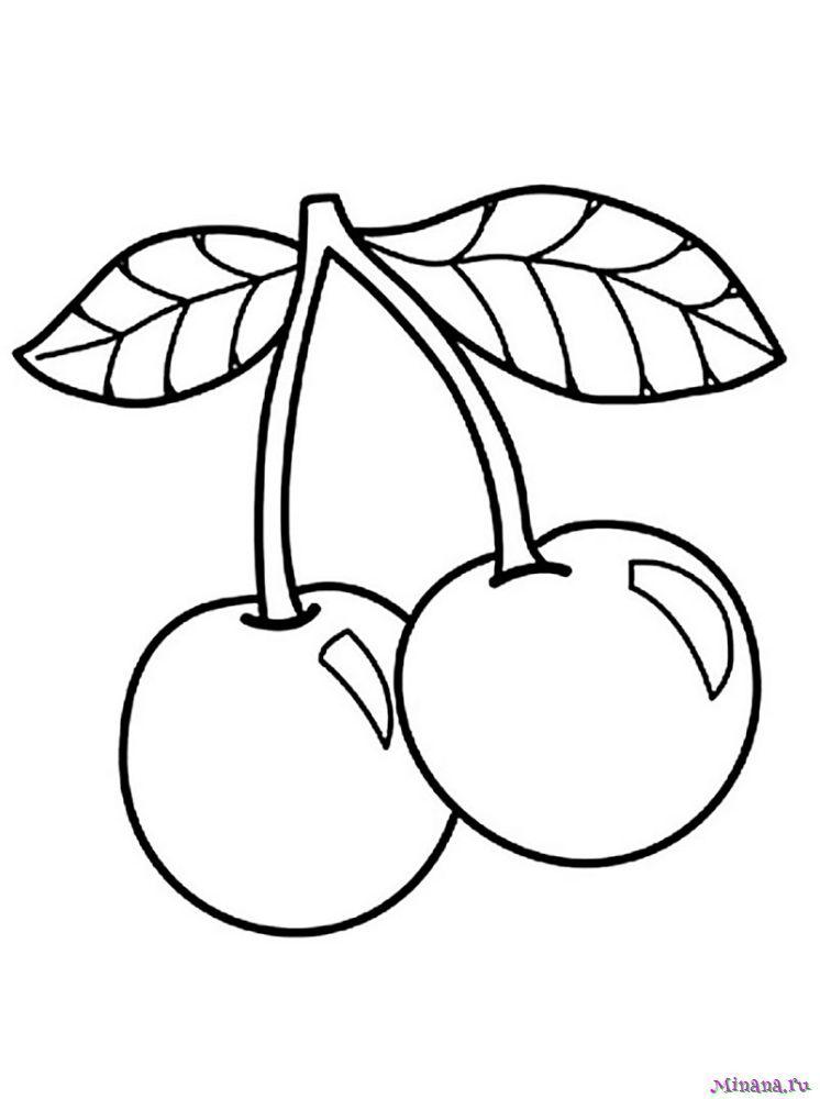 Раскраска вишня 6