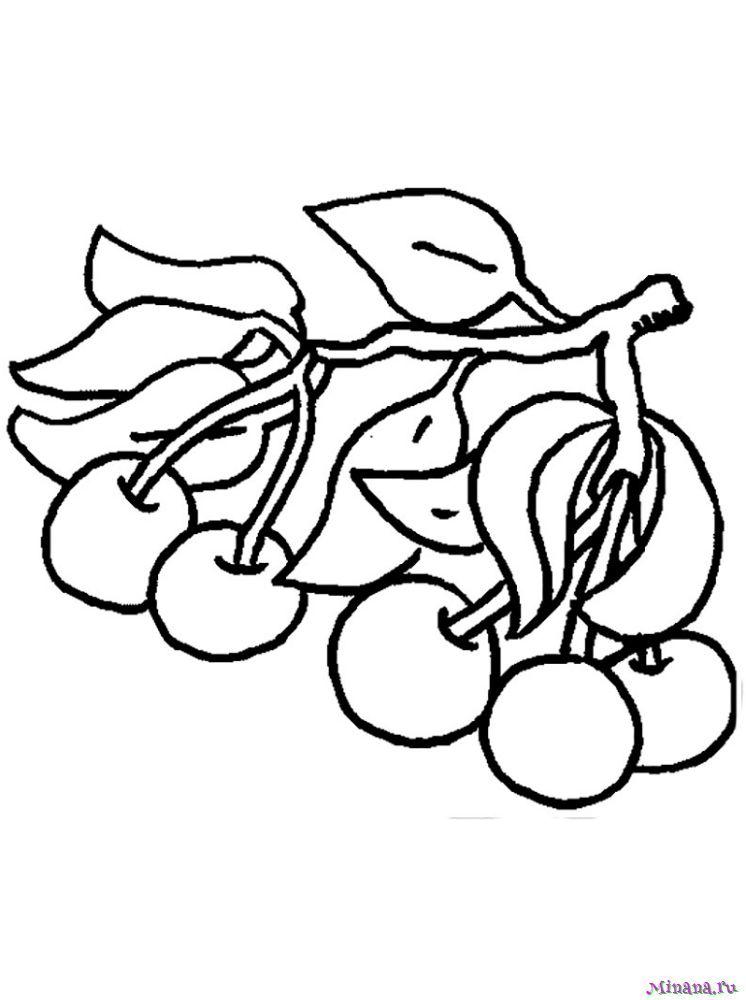 Раскраска вишня 7