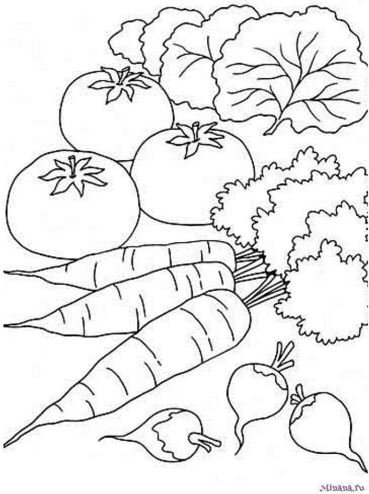 Раскраска овощи 10