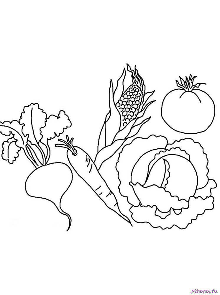 Раскраска овощи 4