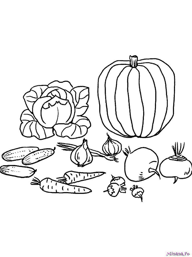 Раскраска овощи 8