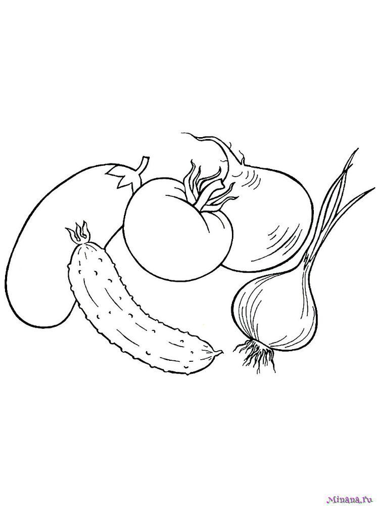 Раскраска овощи 9
