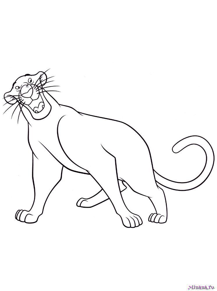 Раскраска Багира
