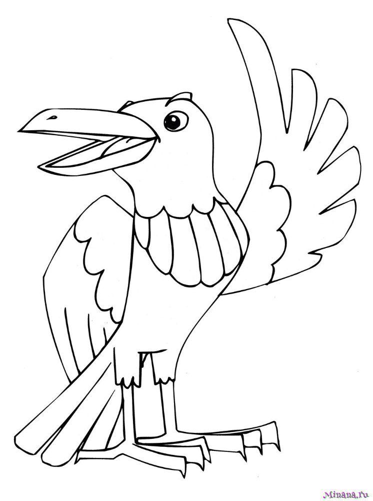 Раскраска ворона 6