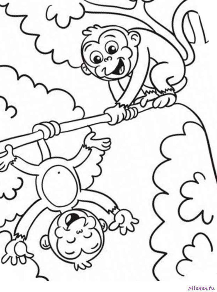 Раскраска две обезьянки